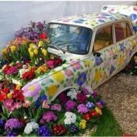 jardin con un coche viejo