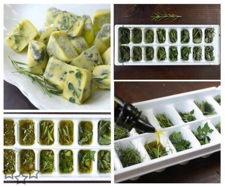Como congelar las hierbas aromaticas